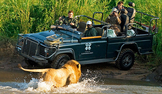 Game drive safari in Londolozi Game Reserve.
