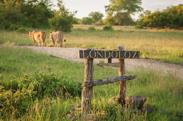 Londolozi is in the heart of the Sabi Sands Game Reserve.